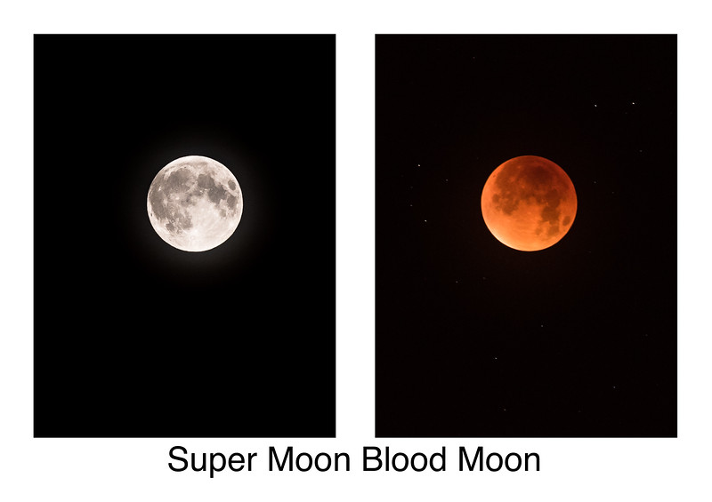 24/52 Super Moon Blood Moon