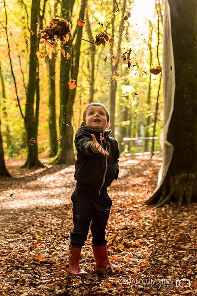 28-52 - Enjoying The Autumn