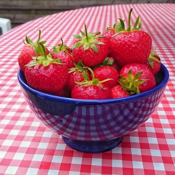 13-52 Hmm Strawberries