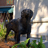 """""""Iron Mike"""" is a statue of a pet dog belonging to a former Hanoverian who originally had the statue placed in Mt. Olivet Cemetery. At some point it was moved to the square in Hanover next to General Pickett's monument, but it has no connection to the General or the Civil War. Photo taken August 29, 2010."""