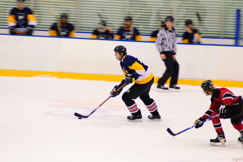 EVENT: Hockey game. A community team (Golgen eagles) and their opponents.