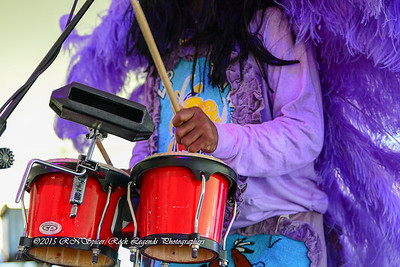 05-03-2015 - Cha Wa Mardi Gras Indian Funk Band - Pensacola Crawfish Fest #31