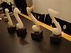 2009-0103-swan-ouderaadhuis-006