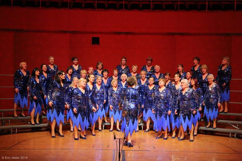 Cheshire Chord Company