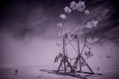 IRDeep-20140830-DSC08204