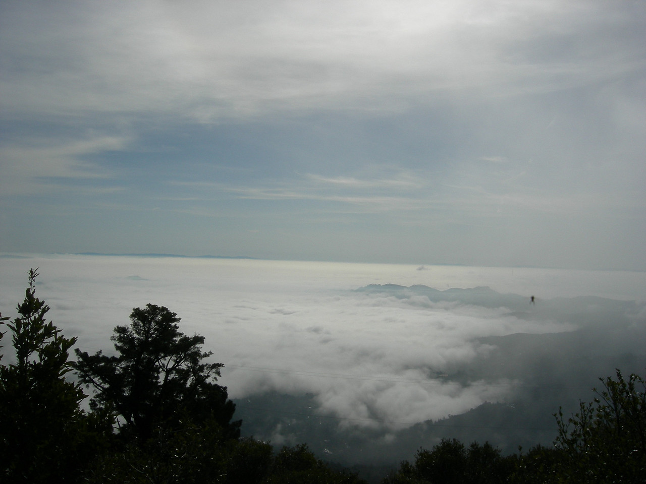 View from Mt. Tamalpais. Sutro Tower can be seen in the distance.