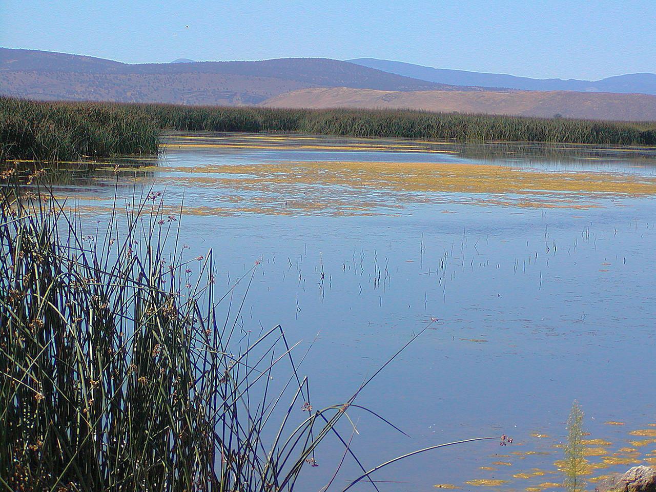 Tule Lake