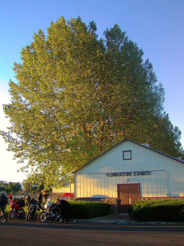 Modoc County Fairgrounds in Cedarville