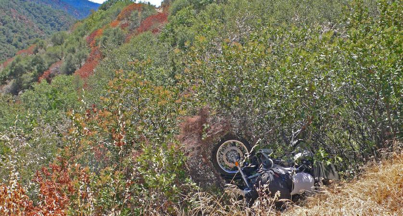 Fortunately thick bushes caught both the bike and rider before a steep drop-off   (Photo:Tandy Bozeman)