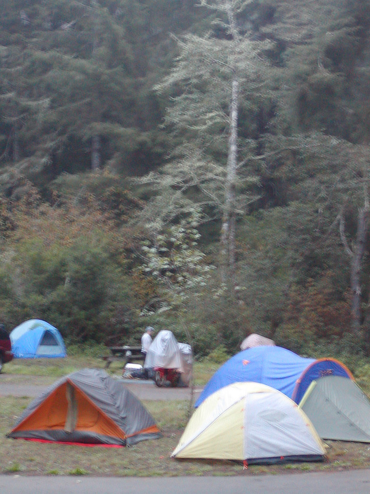 Lookout Group Campsite