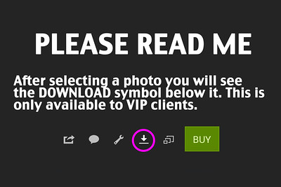 VIP-DOWNLOAD-INSTRUCTIONS