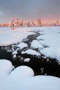 Full of snow