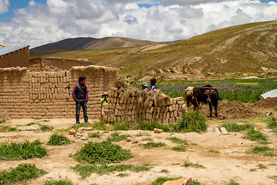 021 Road to Oruro Bolivia © David Bickerstaff
