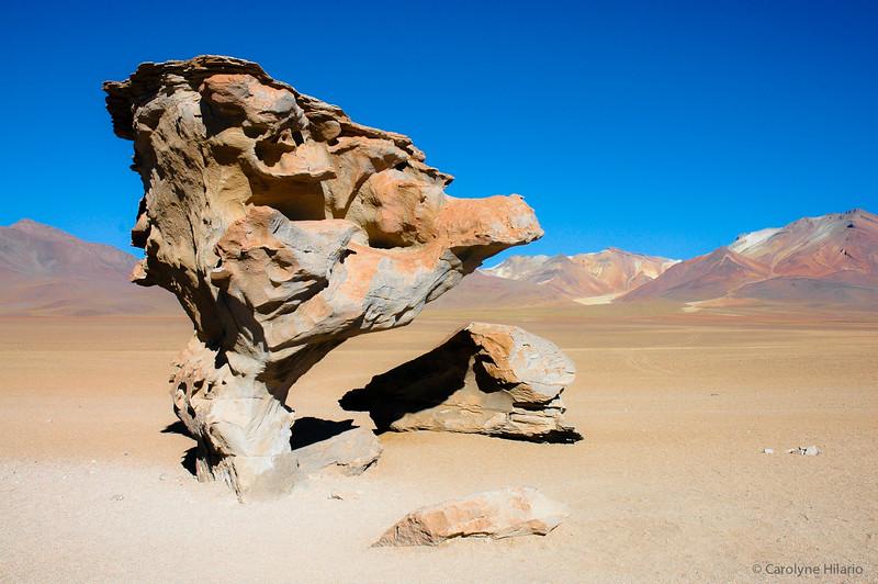 """Desert of Siloli's """"Stone Tree""""<br /> Salar de Uyuni (Uyuni Salt Desert)"""