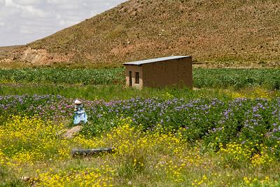 017 Road to Oruro Bolivia © David Bickerstaff