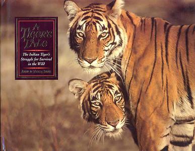 A Tigers Tale