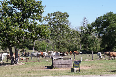 7iL Ranch_Print-11