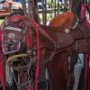 7iL Ranch_Print-33