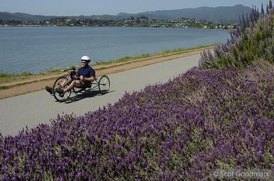 Tiburon Bike Ride 2005