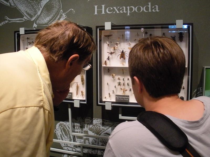Harvard Museum of Natural History, Cambridge, MA