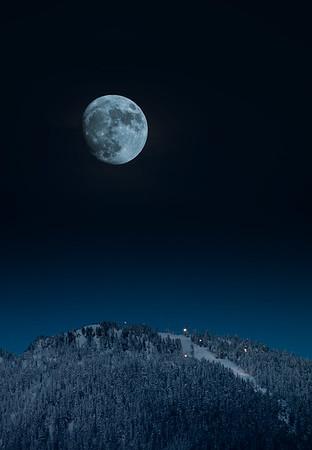 Cypress Moon