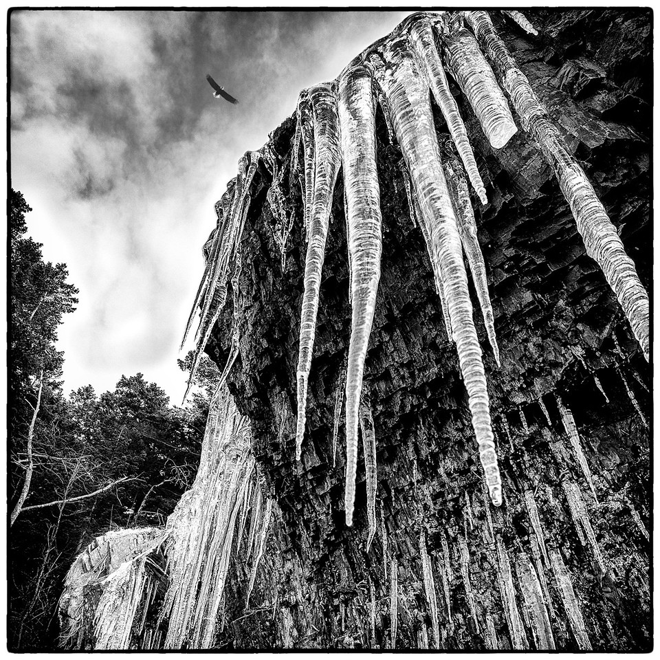 Soaring Icicles.