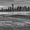 Liberty State Park Marsh B&W