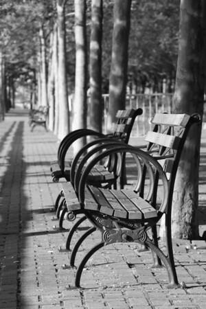 Hoboken Benches