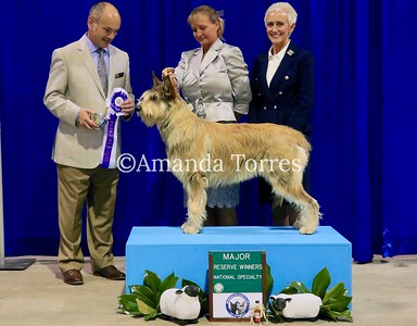 BPCA National 2017 Regular classes Show Wins