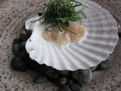Fresh Scallop with tarragon and a bit of cream