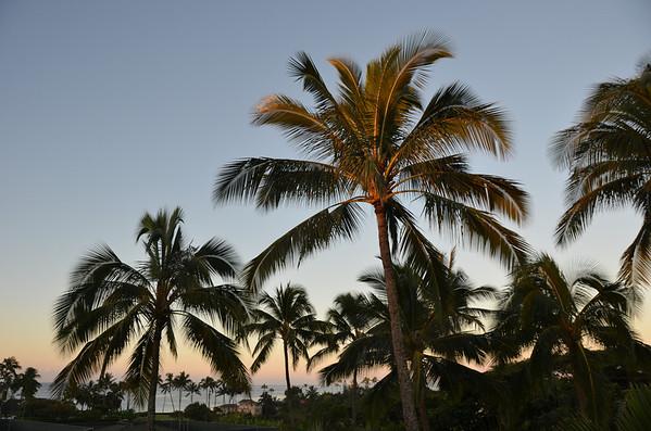 Hawaii 2011