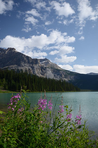 Emerald Lake and wild flowers