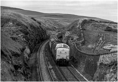 "55003 ""Meld"" at Lamberton Beach on the 0950 Edinburgh-Plymouth. 5th July 1980"