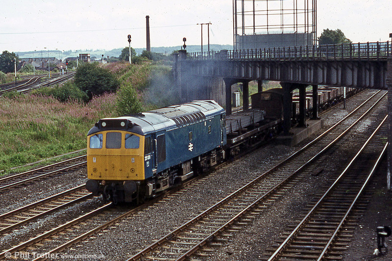 25101 and a mixed freight at Toton on 20th August 1980.