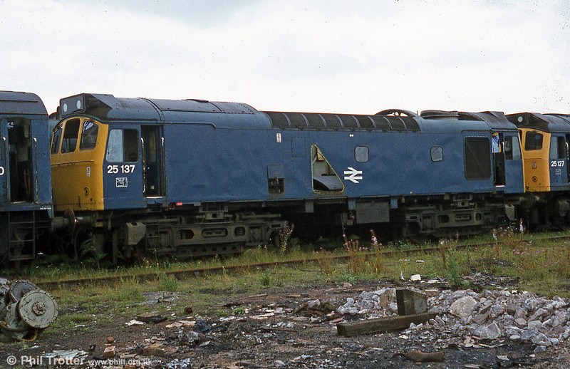 25137 on the scrap line at Swindon on 19th August 1981. Withdrawn in November 1980, the loco lasted until May 1983.