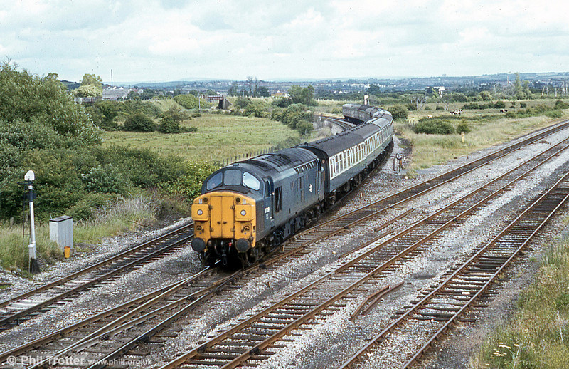 Split headcode class 37 no. 37019 hauling 1V79, the Saturday 0824 York to Tenby coming off the Swansea District Line at Llandeilo Junction on 5th July 1980.