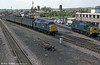 The collective noun for class 37s is probably a 'growl'. Anyway, there are plenty of them in this June 1984 view of Severn Tunnel Junction.
