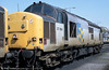 Also seen stabled at Godfrey Road, Newport is 37884 with steel sector markings. 37884 was another of the class 37s sent to Spain.