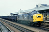 An unidentified class 37 heads east through Cardiff Central with a coal train on 28th October 1981.