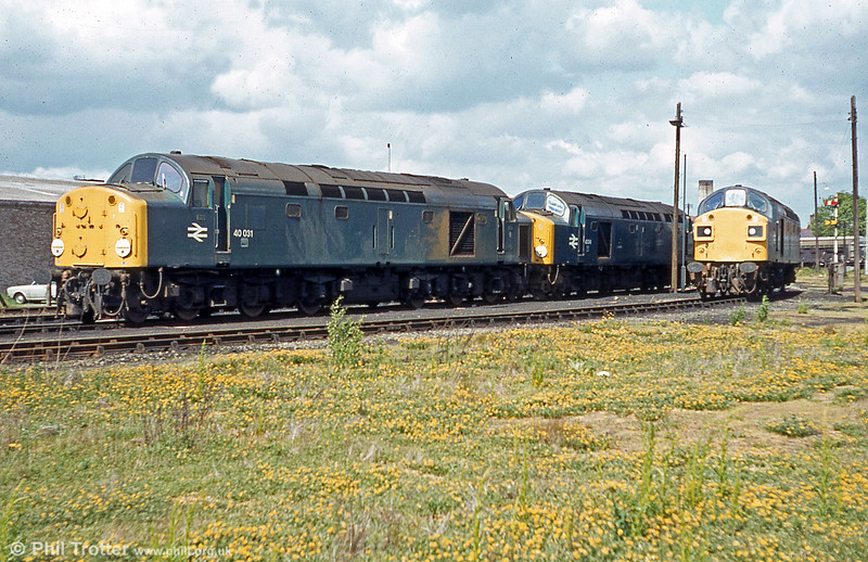 A trio of class 40s, including 40031 'Sylvania' and 40014 'Antonia' and 40144 at Croes Newydd, Wrexham in 1979.