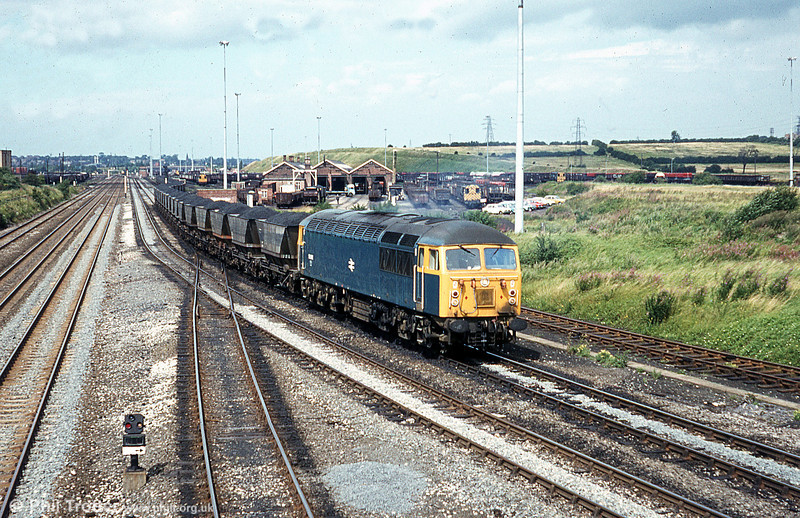 56062 passes Toton yard with an mgr coal train on 20th August 1980.
