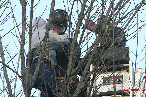 ELYRIA FIREFIGHTERS RESCUE KID STUCK UP IN A TREE ON EAST AVE