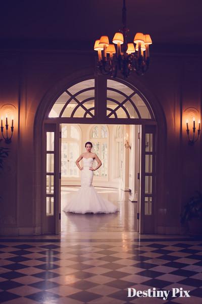 Natalie's Bridal Pix
