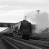 46252 City of Leicester at speed with the up Royal Scot near Sears Crossing (1957-58).