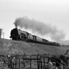 "All the drama of Shap but very much the decline of the Duchesses.  It is difficult to be sure but I identify this tentatively as 46251 City of Nottingham based on the curved running plate and the general shape of the name.  The shot was taken in August 1963 and features yet another ""milko""!"