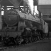 46169 The Boy Scout pictured in front of the coaling tower at Camden MPD on 19 August 1956.