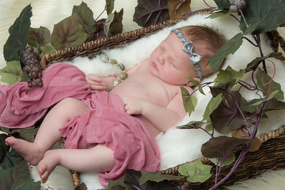Enchanted Forest Baby_01