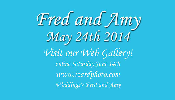 Fred and Amy Reception Card Front 03