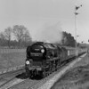 35018 British India Line heading the Bournemouth Belle passing Hinton Admiral on 5 May 1956.  My father made a determined effort to seek out the modified Bulleid Pacifics as soon as they appeared.  The first West Country modified (Barnstaple) also features in a series of pictures.