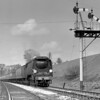 34095 Brentor with the Birkenhead to Bournemouth train approaching Southcote Junction on 30 April 1955.